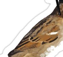 Bird Law - Philadelphia Bird Law Sticker