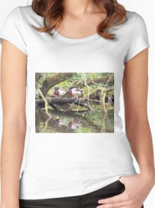Two Ducks resting beside the lake Women's Fitted Scoop T-Shirt