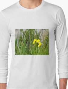 Beautiful flower at spring T-Shirt