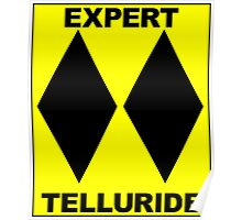 TELLURIDE COLORADO DOUBLE BLACK DIAMOND SKIING SKI EXPERT ONLY Poster