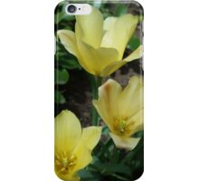 Yellow Blooms iPhone Case/Skin