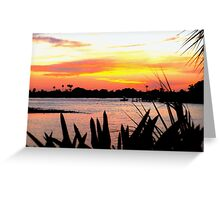 Bird of paradise leaves in silhouette Greeting Card