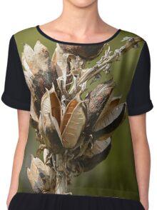 Milkweed Women's Chiffon Top