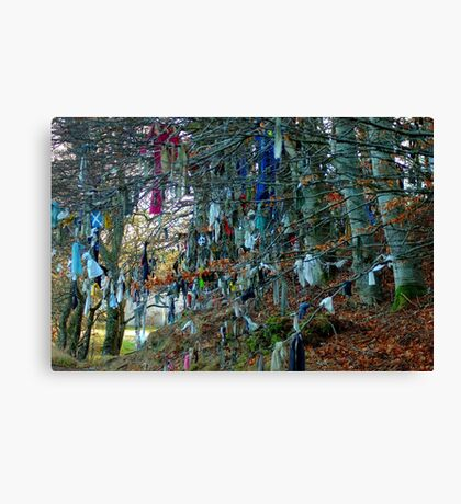 Clootie well Canvas Print