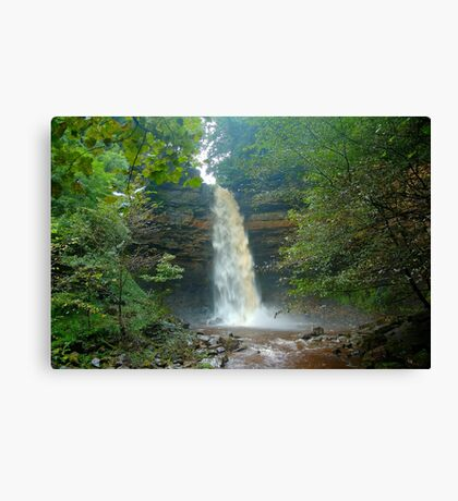 Hardraw Force Canvas Print