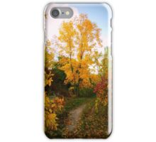 Autumn Trail iPhone Case/Skin