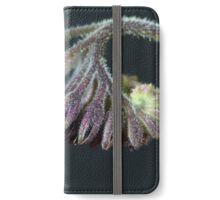 Flowers and blossoms of common comfrey iPhone Wallet/Case/Skin