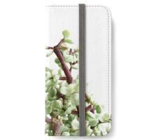 Efflorescence No. 9964 iPhone Wallet/Case/Skin