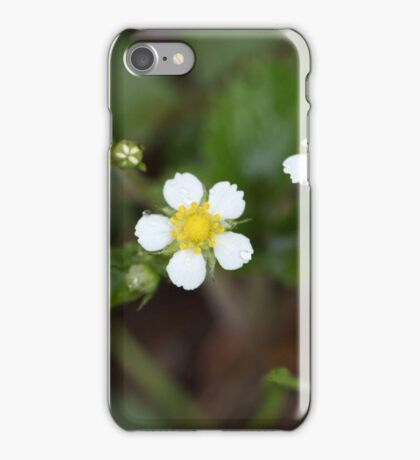 Flowers of woodland strawberries iPhone Case/Skin