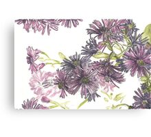 Fall asters Canvas Print