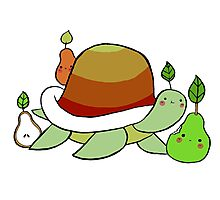 Pear Turtle Photographic Print