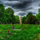 Holy Trinity Church by Nigel Bangert