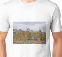 Fall Colors in the Tetons Unisex T-Shirt