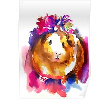 Guinea Pig in the Spring Poster