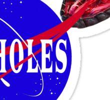 NASA Lies - NASHOLES  Sticker