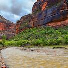USA. Utah. Zion National Park. River. by vadim19