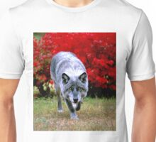 Power of Wolf Gaze Unisex T-Shirt