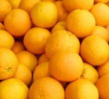 Orangerie Sticker
