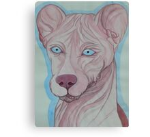 Hairless Weasel Canvas Print