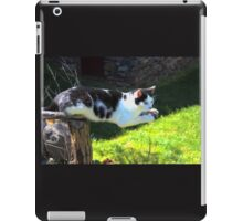 Cat Out on a Limb iPad Case/Skin