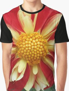 Star Sister Red and Yellow Dahlia Graphic T-Shirt