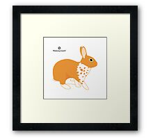 Blanket Brocken Rabbit, Orange Framed Print