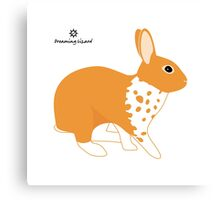 Blanket Brocken Rabbit, Orange Canvas Print