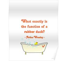 What exactly is the function of a rubber duck? Poster