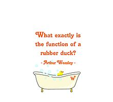 What exactly is the function of a rubber duck? Photographic Print