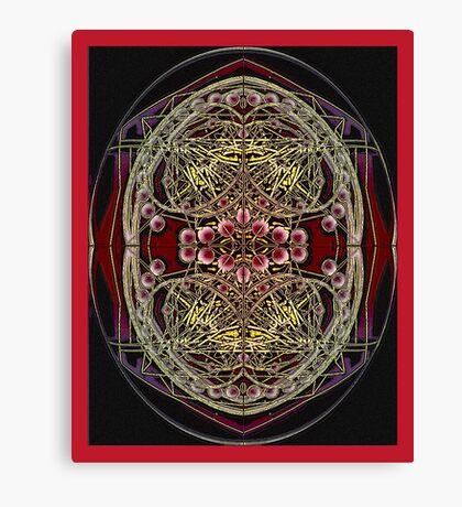 PANSPERMIA HYPOTHESIS 789 Canvas Print