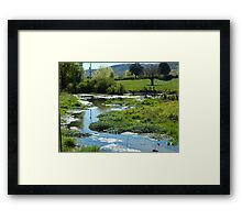 Wetlands Framed Print