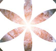 Pinwheel Galaxy | Sacred Geometry Flower of Life Sticker Sticker
