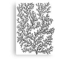 Minimal- white Canvas Print