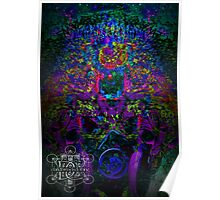 Psychedelic Rave Face.02 Poster