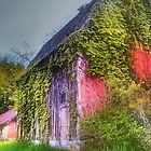 Overgrown by Nadya Johnson