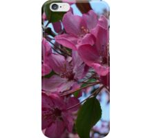 Floral Aesthetic 2 iPhone Case/Skin