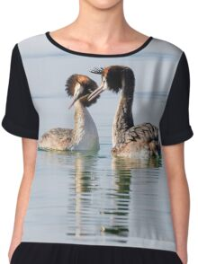 That coy look you give me! Crested Grebes, Lago Trasimeno, Umbria, Italy Women's Chiffon Top