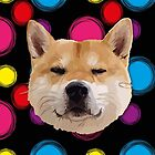 Hachiko Dog by thedailysoe