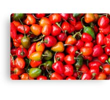 Plump Cherry Peppers Canvas Print