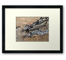 Remains!  Flinders Ranges. South Australia Framed Print