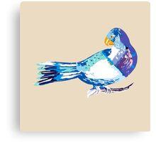 Bird Day celebrations for Vini Marina 5 Canvas Print