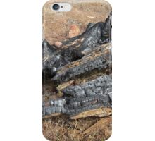 Remains!  Flinders Ranges. South Australia iPhone Case/Skin