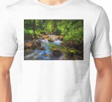 A forest stream. Unisex T-Shirt