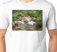 A Swiss stream. Unisex T-Shirt