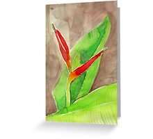 Watercolour - Bird of Paradise - Eumundi Greeting Card