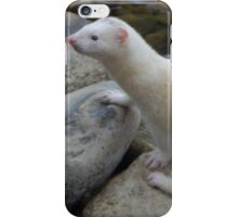Prince of Mountains iPhone Case/Skin