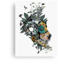Animal Skull Canvas Print