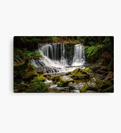 The Horseshoe Falls Canvas Print