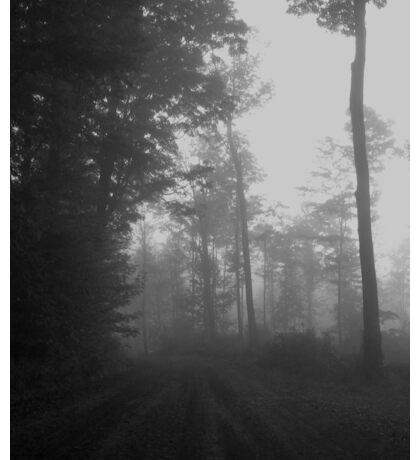 Fall Fog #2 Sticker