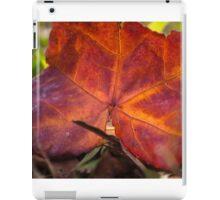 Autumn colour iPad Case/Skin